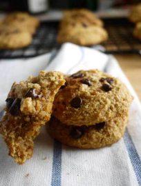 Chocolate Chip Cinnamon Cookies (paleo, GF) | Perchance to Cook, www.perchancetocook.com