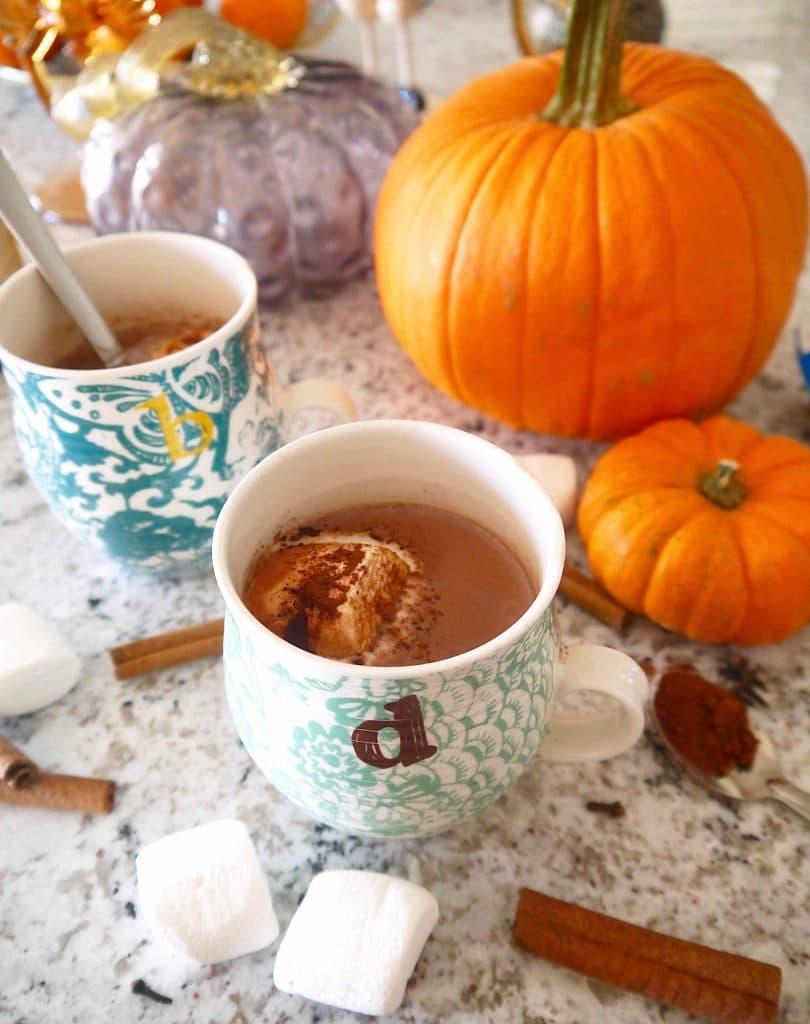 Paleo Pumpkin Hot Chocolate | Perchance to Cook
