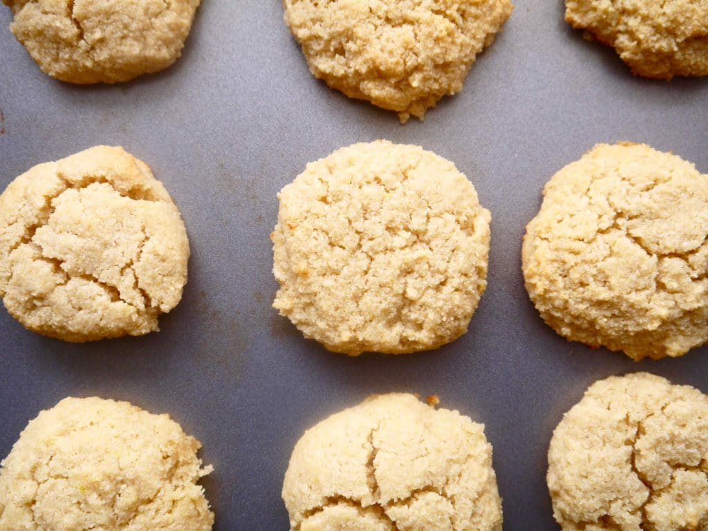 Image result for paleo sugar cookie