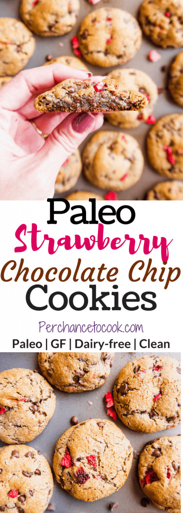 Paleo Strawberry Chocolate Chip Cookies (GF)   Perchance to Cook, www.perchancetocook.com