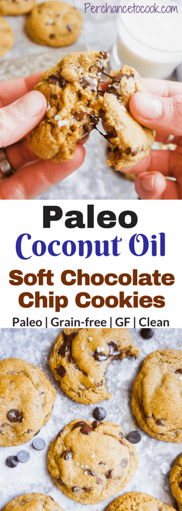 Paleo Coconut Oil Soft Chocolate Chip Cookies | Perchance to Cook, www.perchancetocook.com