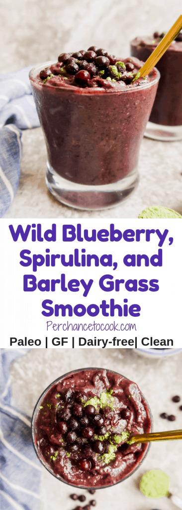 Wild Blueberry, Spirulina, and Barley Grass Smoothie (Paleo, GF) | Perchance to Cook, www.perchancetocook.com